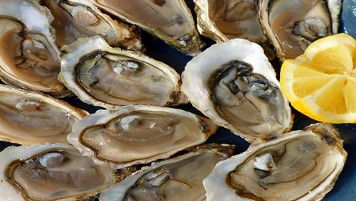 Oysters Small